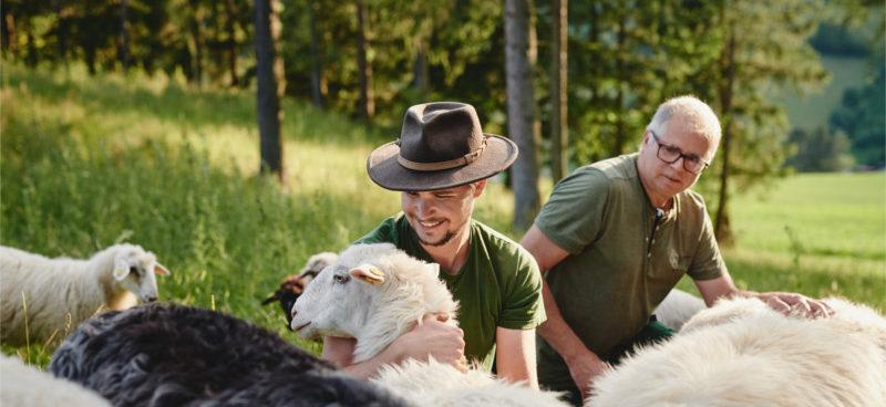 Die Bauern vom Peramakulturhof Ellersbacher kuemmern sich um ihre Schafe die draussen auf der freien Weide leben